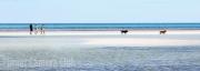 les spitz - Beach Walk by Les Spitz
