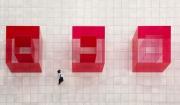 les spitz - Red Cubes