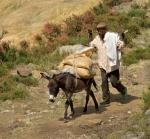 32 Farmer And Donkey