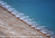 FRINGES-ON-A-DORSET-BEACH-by-Les-Spitz