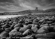 CASTLE-BY-THE-SEA-by-Tim-Dowd