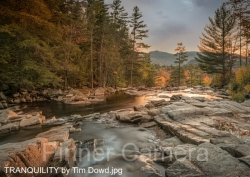 TRANQUILITY-by-Tim-Dowd