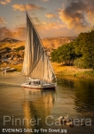 EVENING-SAIL-by-Tim-Dowd