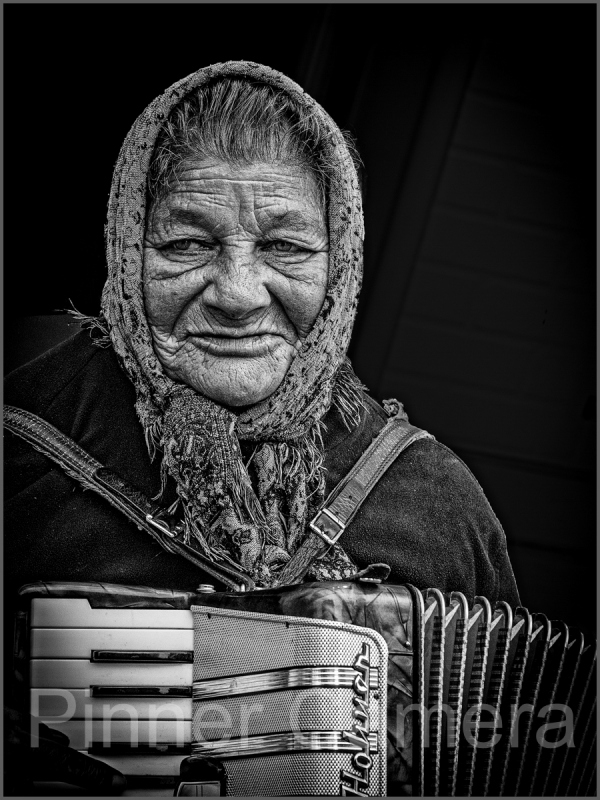 THE-ACCORDIONIST-by-Lew-Wasserstein
