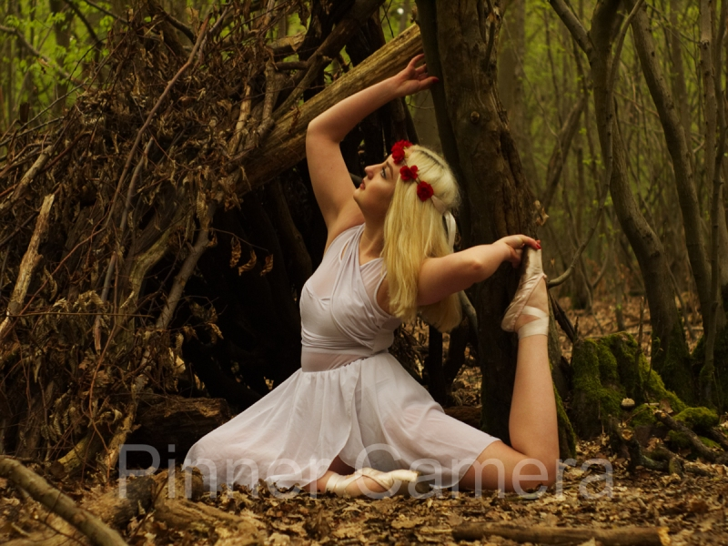 Terry-Blackman-BALLERINA-IN-THE-WOOD-by-Terry-Blackman
