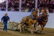 HorsePulling