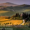 TUSCAN-LIGHT-by-Tim-Dowd