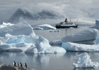 cuverville-view-antarctica