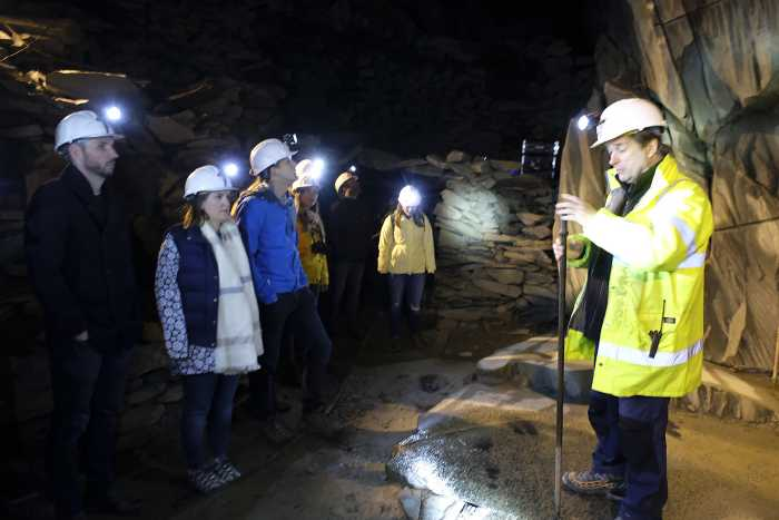008 in the mine