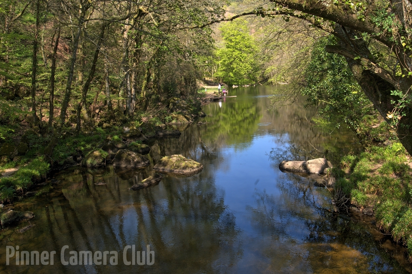 15. ALONG THE TEIGN by Jim Niblett
