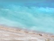 les spitz - Worbarrow Bay Beach