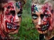 Zombie Apocalypse by Terry Blackman