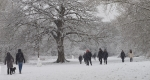 19 Covid Walk In The Winter Snow