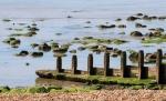 45 Low Tide Breakwater