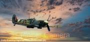 Early-Evening-Flight-by-Kevan-Rosendale