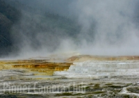 mammoth-terraces-yellowstone