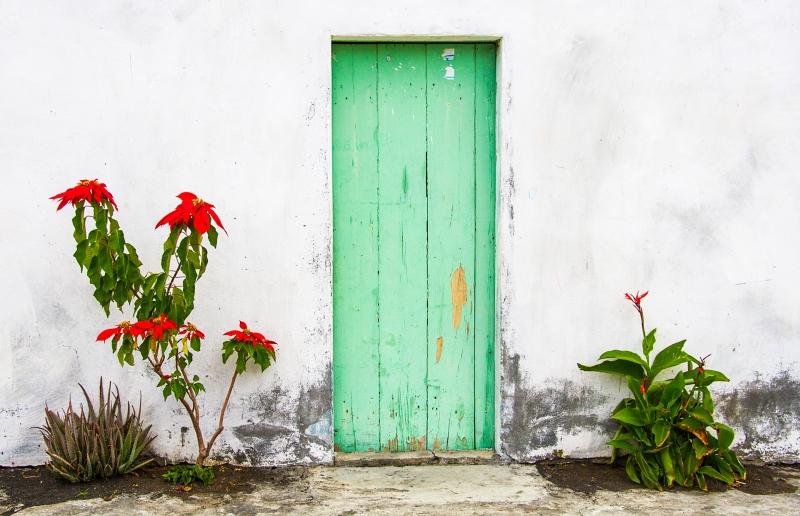 Michael-Lurie-Green-Door