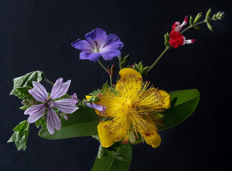 Michael-Lurie-Summer-Bouquet
